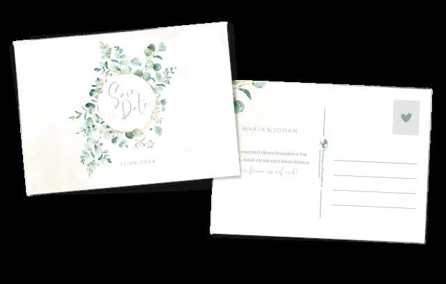Eukalyptus - Postkarte